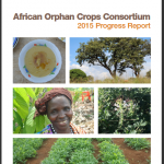 Cover of AOCC Progress Report