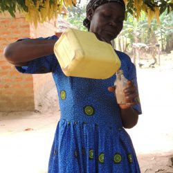 n Abia, Northern Uganda, farmer and grandmother Catherine Ekuka, 63, decants shea oil for cooking. Photo CWatson/ICRAF