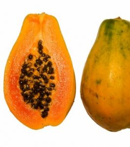 Papaya_cross_section_BNC